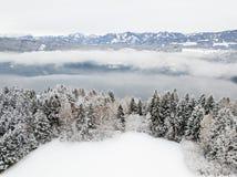 Ландшафт зимы, снег покрыл поле, сосны, предпосылку высокой горы Стоковая Фотография