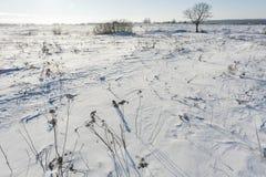 Ландшафт зимы с валами стоковые фото