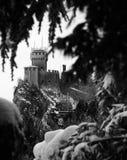 Ландшафт зимы с взглядами замка обрамленного branche дерева Стоковое Изображение