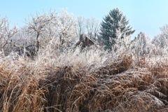 Ландшафт зимы с изморозью, старым домом и голубым небом стоковые изображения rf