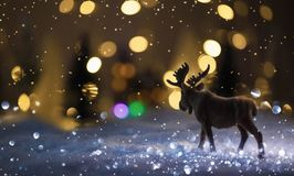 Ландшафт зимы с лосями Стоковое Изображение RF