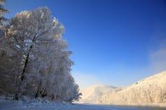 Ландшафт зимы с рекой Katun на горах Altai Стоковые Изображения RF