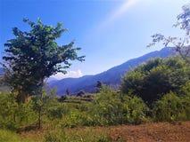Ландшафт имеет горы, растительность & голубое небо стоковые изображения rf