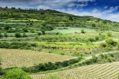 ландшафт Испания Стоковая Фотография
