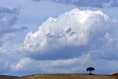 ландшафт Италии apulia Стоковые Изображения RF