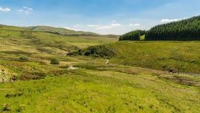Ландшафт и проселочные дороги в Уэльсе, Великобритании Стоковое фото RF