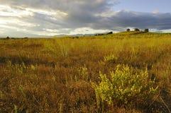 ландшафт Каталонии Стоковая Фотография RF
