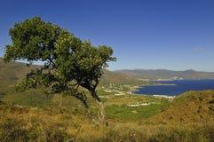 ландшафт Каталонии Стоковая Фотография