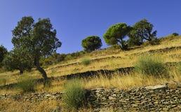ландшафт Каталонии Стоковое фото RF