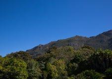 Ландшафт Кейптауна с редко взглядом горы таблицы без облаков в Южной Африке стоковые фотографии rf