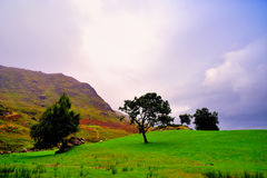 ландшафт Керри Стоковая Фотография RF