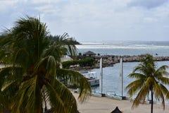 Ландшафт, красивый остров ямайки стоковые фото