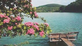 Ландшафт красоты Стоковые Фотографии RF