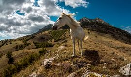 Ландшафт Крым природы красоты Стоковая Фотография RF