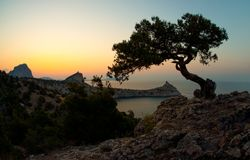 Ландшафт Крым природы красоты Стоковые Фотографии RF