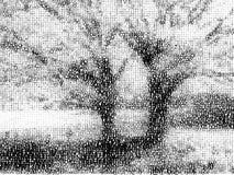 ландшафт купелей Стоковое фото RF
