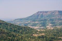 Ландшафт леса в районе Dhar стоковое изображение rf