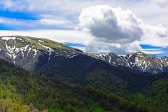 Ландшафт леса горы Стоковые Изображения RF