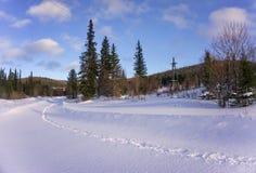 Ландшафт леса зимы с путем в снеге Стоковое Изображение