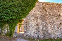 Ландшафт лета в городке Адвокатуры крепости старом, Черногории стоковое фото