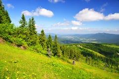 Ландшафт лета в национальном парке Bayerische Wald, Германии Стоковые Изображения RF