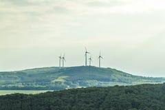 Ландшафт лета источника возобновляющей энергии ветротурбины с ясностью Стоковое Фото