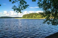 Ландшафт лета на озере Seliger, зоне Tver стоковые фотографии rf