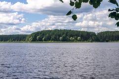 Ландшафт лета на озере Seliger, зоне Tver стоковая фотография