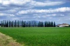 Ландшафт лета около Volterra, Тосканы Стоковые Фотографии RF