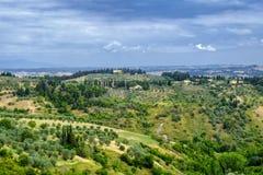 Ландшафт лета около Volterra, Тосканы Стоковая Фотография RF