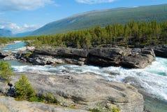 Ландшафт лета при река проходя долиной горы в сельской Норвегии Стоковые Изображения
