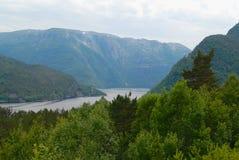 Ландшафт лета с горами, лесом и озером на переднем плане в сельской Норвегии Стоковые Изображения