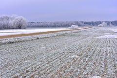Ландшафт Литвы сельское место Стоковые Фото