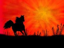 ландшафт лошади иллюстрация вектора