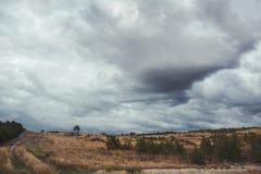 Ландшафт луга Стоковая Фотография RF