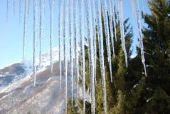ландшафт льда стоковое фото
