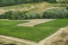 Ландшафт между Imola и Riolo Terme эмилия-Романьей Стоковая Фотография