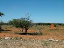 ландшафт Намибия Стоковое Фото