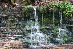 Ландшафт напольно Поток горы, разделяя в много водопадов Каменистые речные пороги, упаденные листья, осень L стоковые изображения