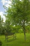 ландшафт напольный Стоковая Фотография