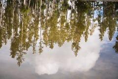Ландшафт национального парка Йеллоустона Геотермическая деятельность, горячие термальные весны с кипятком и перегар стоковые изображения