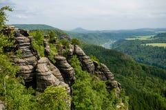 Ландшафт национального парка Швейцарии Saxon скалистый и зеленый деревьев стоковые изображения rf
