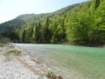 Ландшафт на реке Изаре около Fleck долины, Баварии стоковые изображения rf