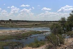 Ландшафт на реке Boteti, национальном парке Makgadikgadi, Ботсване стоковое изображение rf