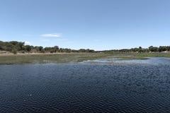 Ландшафт на реке Boteti, национальном парке Makgadikgadi, Ботсване стоковая фотография