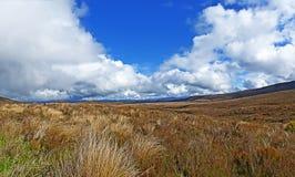 ландшафт Новая Зеландия Стоковое Фото