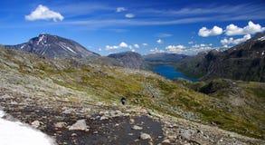 ландшафт Норвегия озера стоковая фотография rf