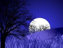 Ландшафт ночи Стоковое фото RF