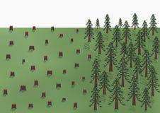Ландшафт обезлесения, большие деревья и много пни, иллюстрация вектора Стоковая Фотография RF