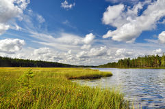 Ландшафт озера в Karelia Стоковые Изображения